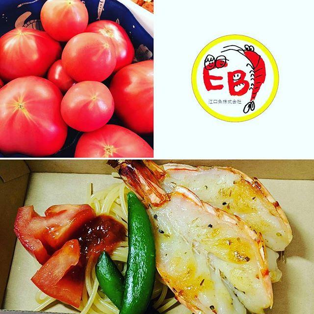 神埼 食フェスタ4月28日4時からですよ!海老の神開きを持って出店いたします。えびフライは、設備の都合上無理そう…。 ですが、おいしい西村さんのサンロード(トマト)が入荷しました!そちらをお供に出陣します!よろしくお願います!#神エビフライ #海老の神開き#えび#えびや #EBI江口魚#おいしい #海老好き #神埼#食フェス #連休 #ビール #お酒 #家族 #がんば #楽しみ #佐賀県 (Instagram)