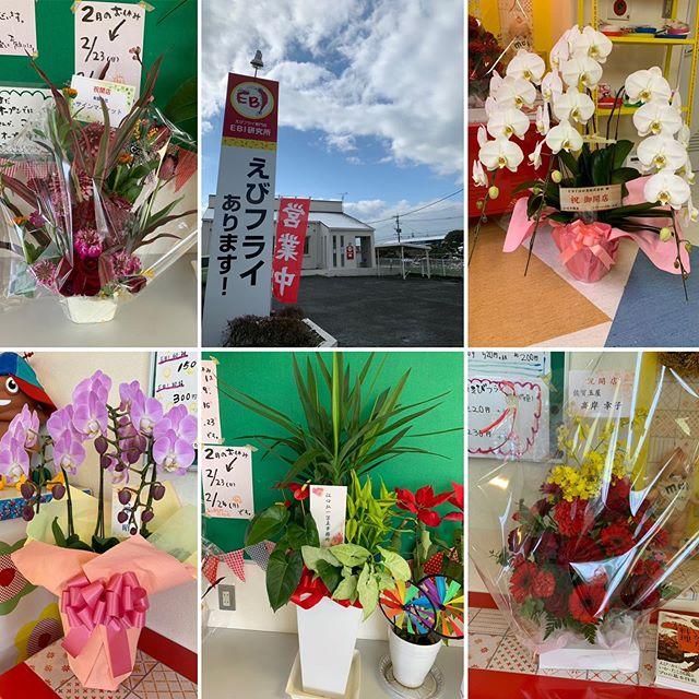 本日ひっそりオープンいたしました。インスタのみの告知でしたが、たくさんのお客様とお花をいただきありがとうございました今は、えびフライのみの販売となりますが皆様のご期待に応えられるお店に進化して突き進みたいと思います!3月29日30日のわらしべ商店街に出店予定しています。佐賀テレビのイベントです。楽しみな事が盛りだくさんです!明日も皆様のお越しをお待ちしてます#ebi江口魚株式会社 #EBI研究所#佐賀県#上峰町#ふるさと納税 #ふるさとチョイス#ふるなび #海老#えびフライ #神えびフライ#上峰町直営ふるさと納税サイト#ebi江口魚株式会社通販#通販あります#ギフト#えびフライ 専門店#おいしい#絶品#こだわり#手作り#愛情#fish#shrimp#big shrimp#fried shrimp#delicious #grilled shrimp#manufacturing#佐賀テレビ#かちかちプレス #メガモッツ #わらしべ商店街 (Instagram)